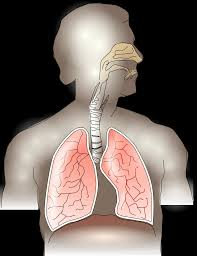 Calling All Respiratory Therapists